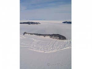 Sea ice surrounds Razorback Island. You can just see our dive site above the island.