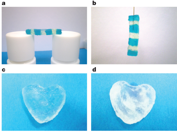 Hydrogel structures