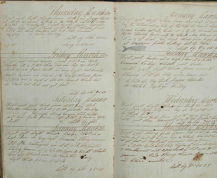 An example of a whaling log - from the American whaler Tybeo