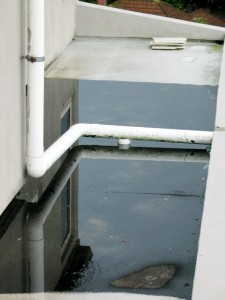 ponding water lounge roof
