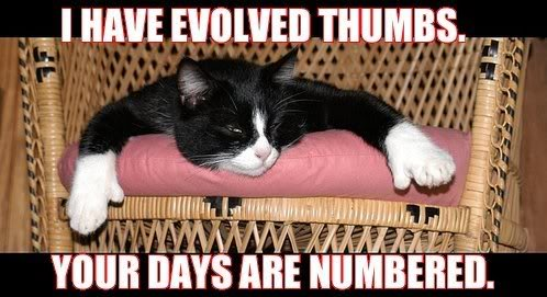 I_have_evolved_thumbs