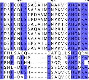 Portion of a protein sequence alignment (Source: EMBL Sequence analysis course)