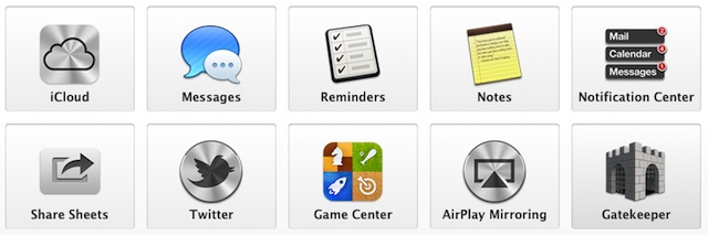 Mountain-Lion-features