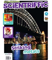 scientriffic-cover