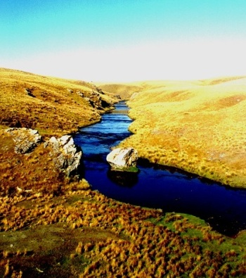 Upper Taieri River, Central Otago (Credit: C. Arbuckle).