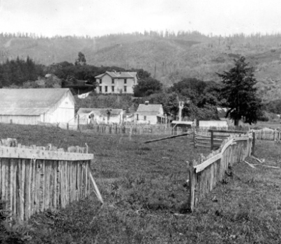 Fence offset over the San Andreas Fault following the 1906 San Francisco Earthquake (Magnitude ~7.9). Rupture length was 475 km, maximum horizontal offset 6m. Source: unknown