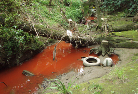 Polluted Auckland streams flow to the sea. Source: Auckalnd Council