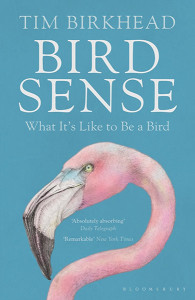 Bird Sense by Tim Birkhead, published by Bloomsbury