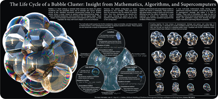 The Life Cycle of a Bubble Cluster: Insight from Mathematics, Algorithms, and Supercomputers