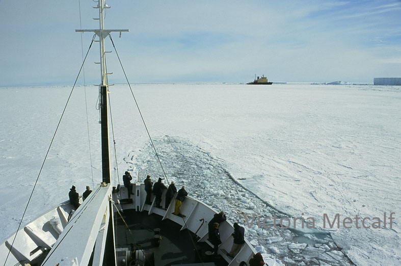 Assistance from other ships to get clear of ice has long been a reality in Antarctic waters especially for ice-strengthened ships as opposed to icebreakers