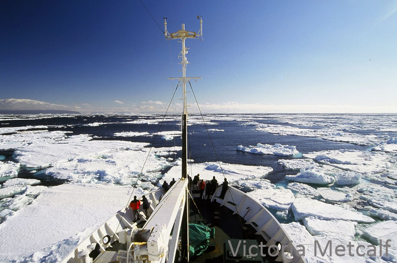 Ship-based activities in Antarctica are not without risk