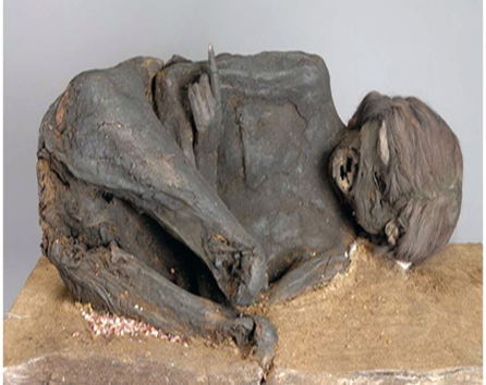 The mysterious mummy in the Bavarian State Archaeological Collection