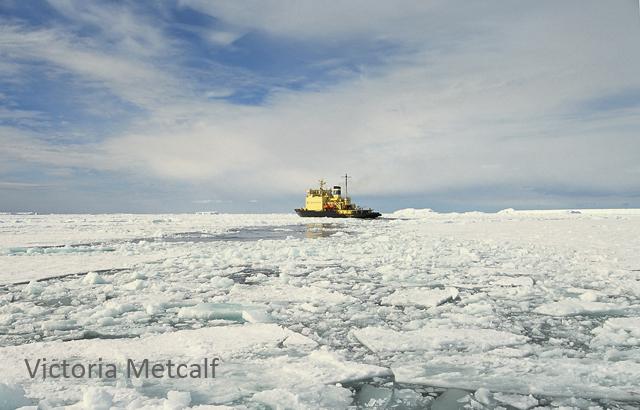 Access to icebreakers is essential for polar research.
