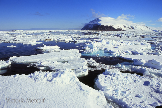 Will the Ross Sea ever receive protection?