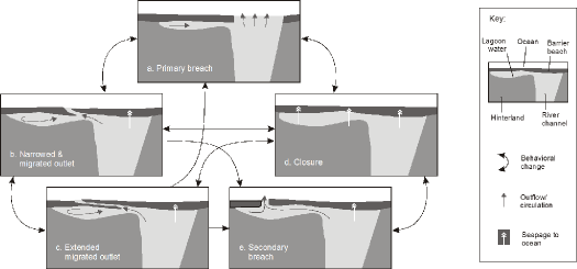 Figure 2. A typical range of hapua lagoon states and behaviors (modified from Hart 2009).