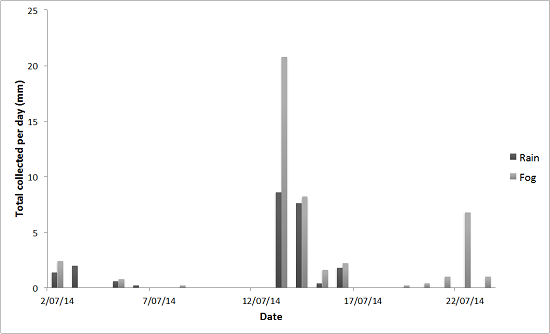 Figure 2: Quantity of fog vs rain collected in the Timber Creek catchment July 2014.