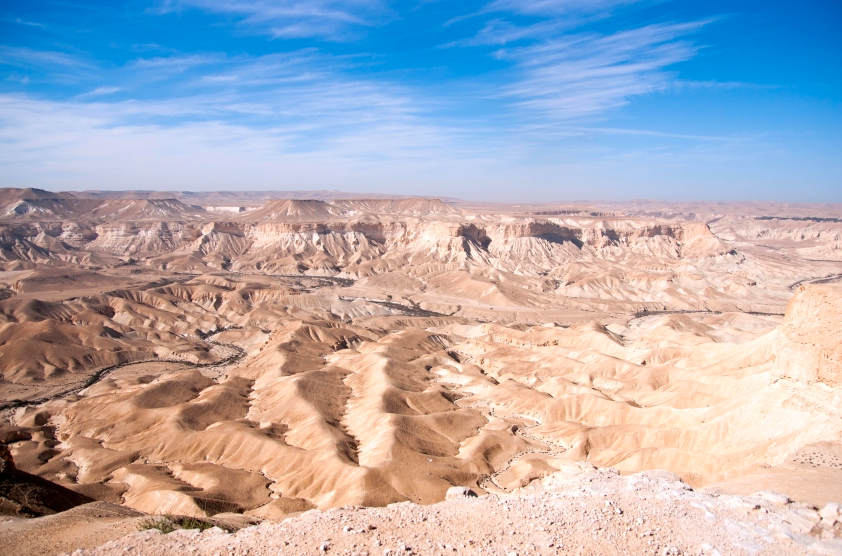 Featured image: The effort to green the Negev