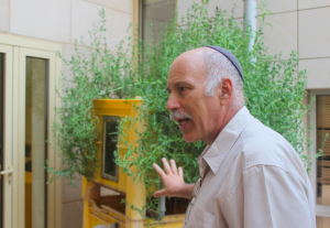 Professor Jack Gilron with the vertical wetland