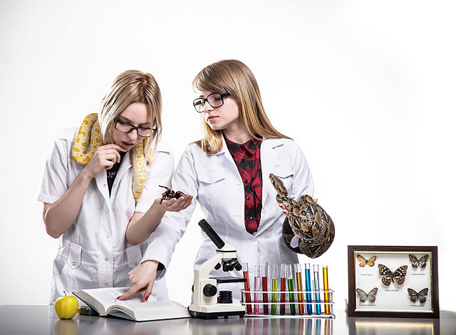 Featured image: Women in science &#8211&#x3B; yesterday, today and tomorrow