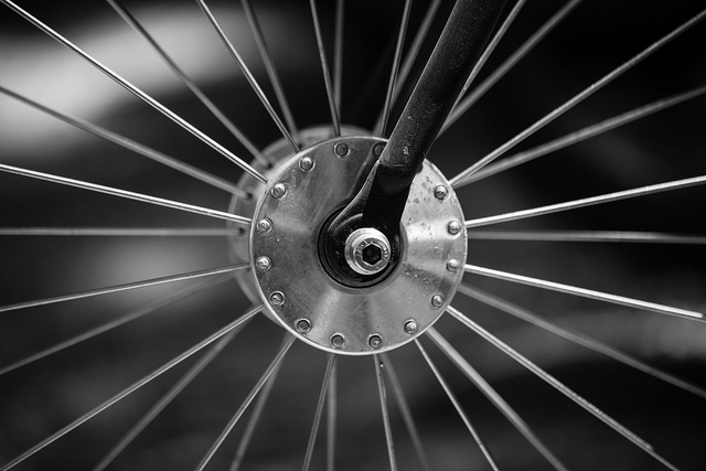 Image: The Auckland Bike Challenge: Day 1 (Wheels of Death Edition)