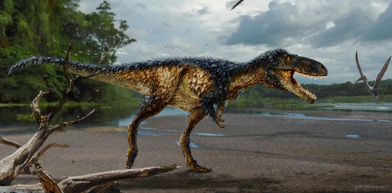 Image: New tyrannosaur species reveals how king of the dinosaurs won its crown