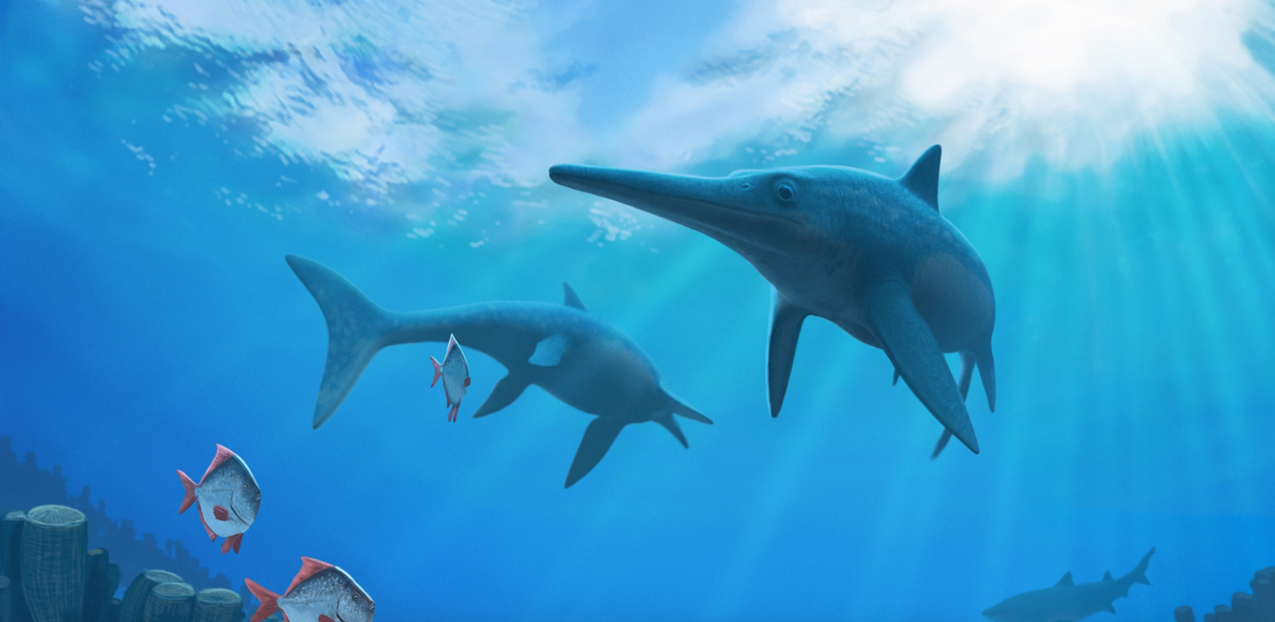 Image: How climate change killed the dinosaurs' underwater cousins