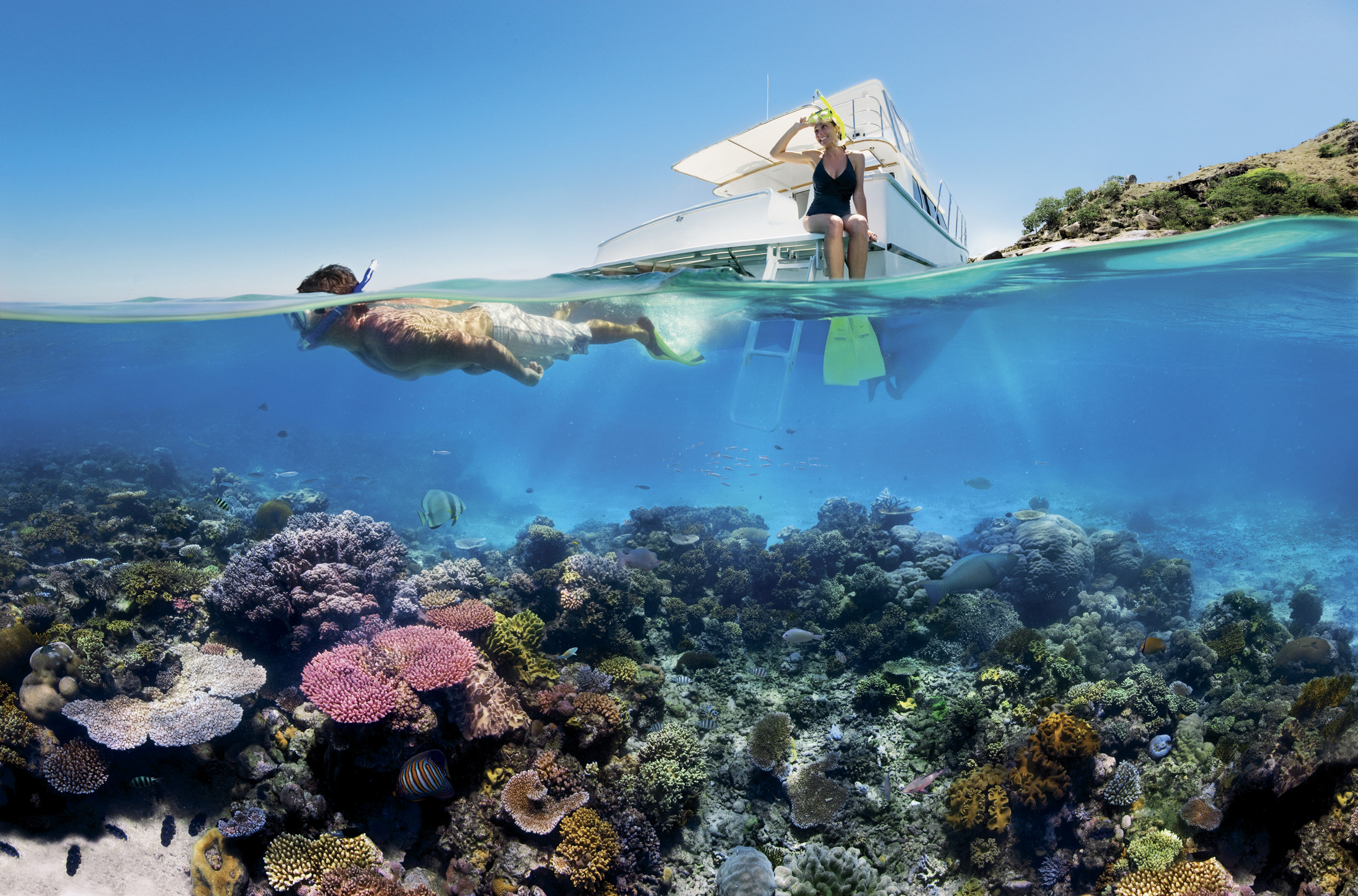 Image: In pictures: a close-up look at the Great Barrier Reef's bleaching