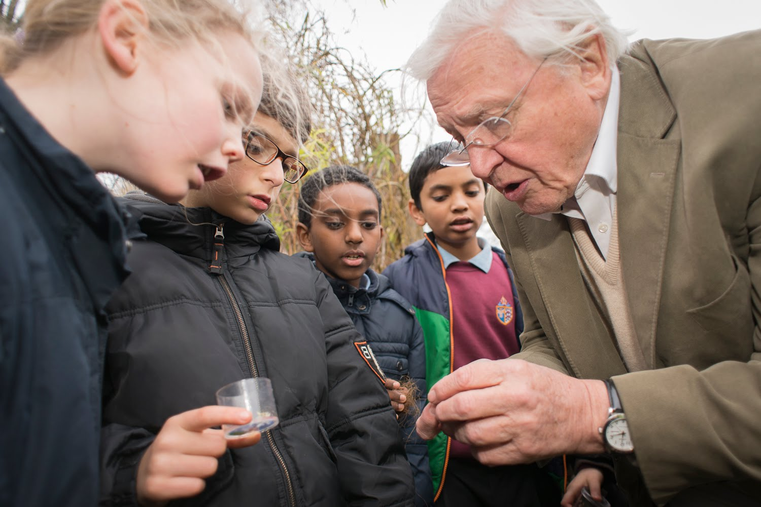 Featured image: Sir David Attenborough at 90: the mesmerising storyteller of the natural world