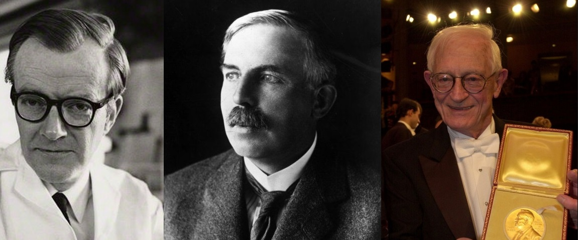 Our Nobel Laureates: Maurice Wilkins, Ernest Rutherford, Alan MacDiarmid