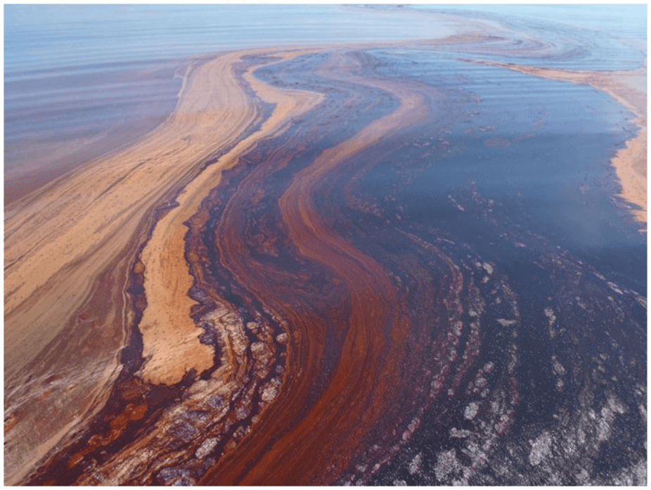 Image: Can we harness bacteria to help clean up future oil spills?