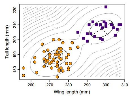 two groups (squares and circles) identified by clustering of female kk wing and tail lengths