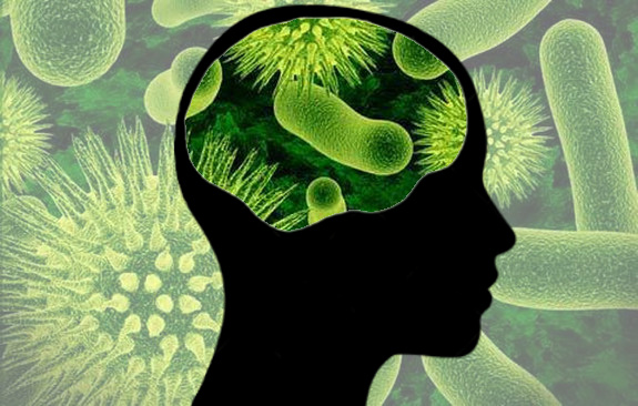 Featured image: Psychobiotics – bacteria as a psychiatric medicine?