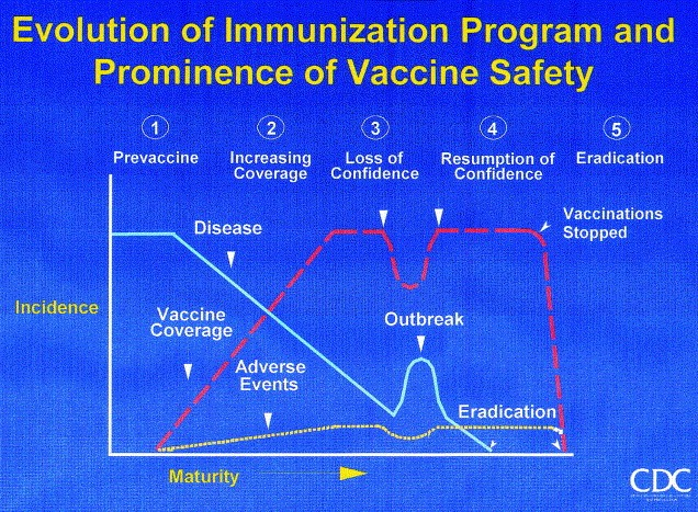figure-6-bob-chens-fabulous-graph-vaccine-1999-17-supp-3-s41-s46