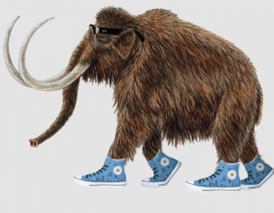 Mammoths = too cool for school