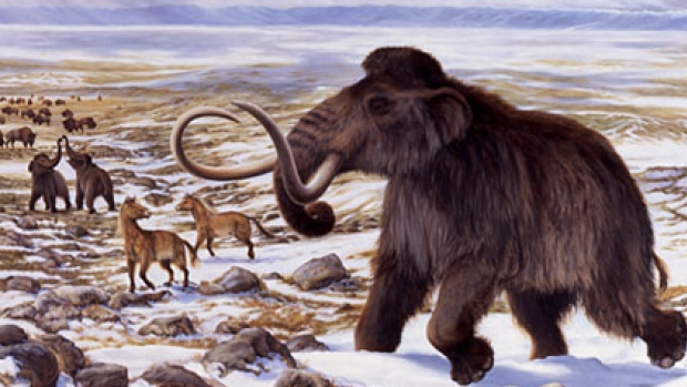 Featured image: Step 5, release your mammoth: NZ scientists tackle de-extinction consequences