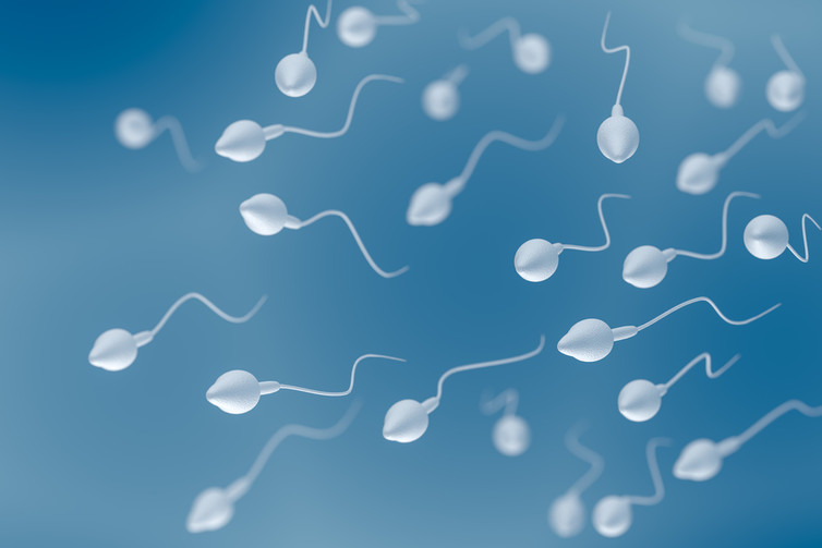 Featured image: Huge drop in men's sperm levels confirmed by new study – here are the facts