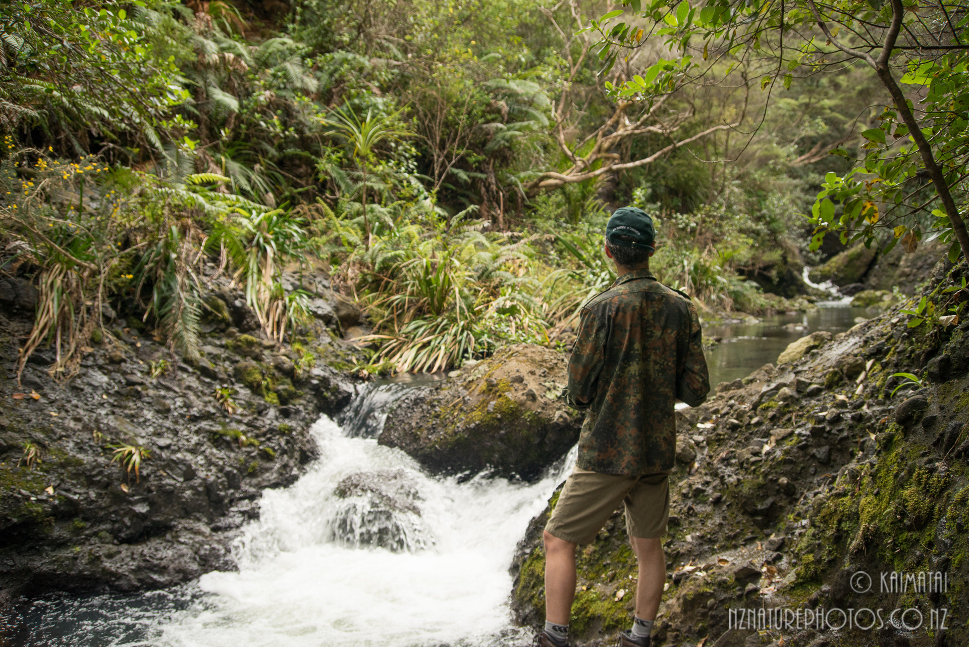 Featured image: Walking in water: First trip to the Pararaha Stream