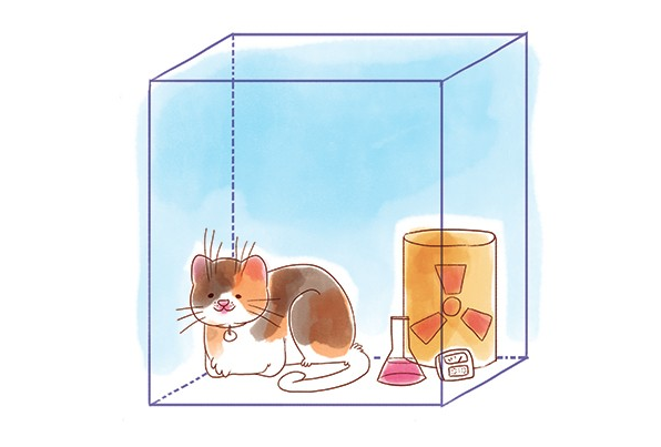 Featured image: Science Tank | Schrodinger's cat & the double slit experiment