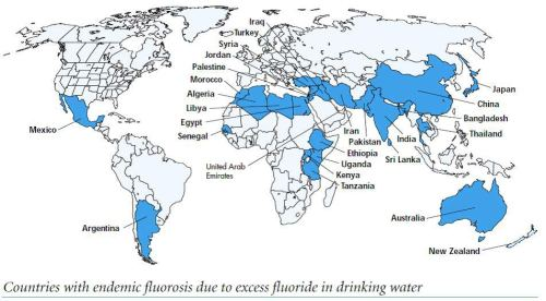 Sciblogs | Yet another fluoride-IQ study