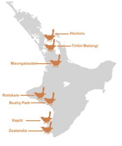 There are currently seven sites with hihi in New Zealand
