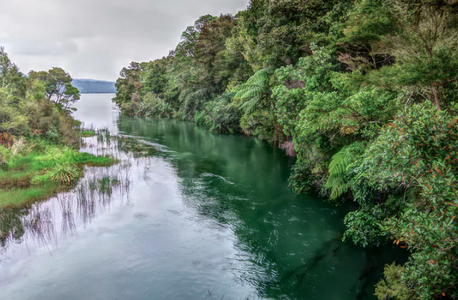 Featured image: Six ways to improve water quality in New Zealand's lakes and rivers