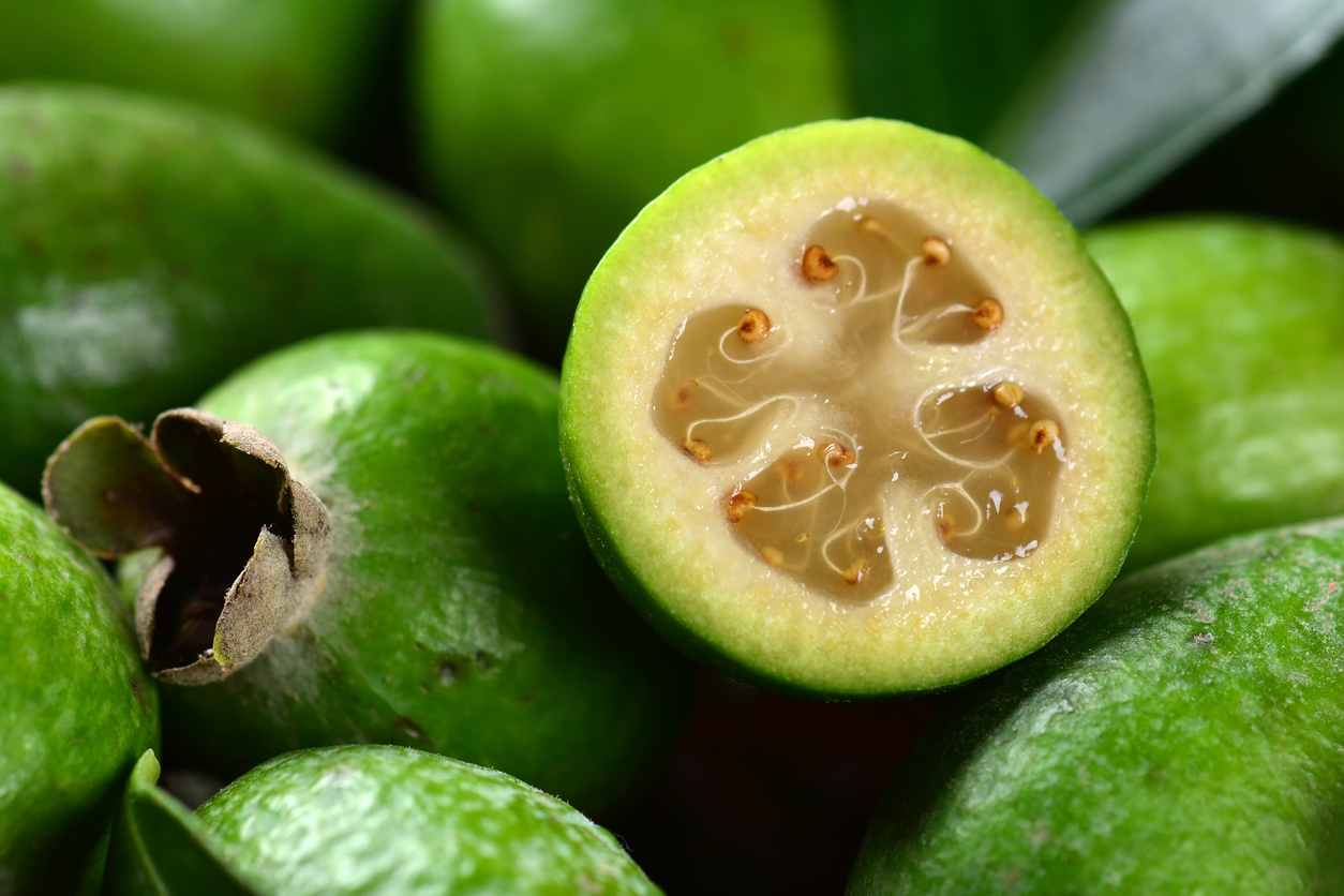 Featured image: Fighting fungi with feijoa