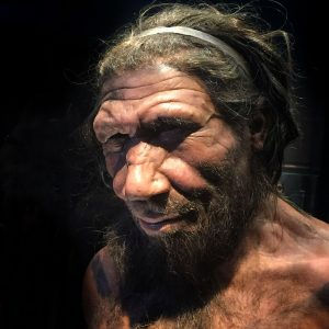 Featured image: What happened to the Neanderthals?