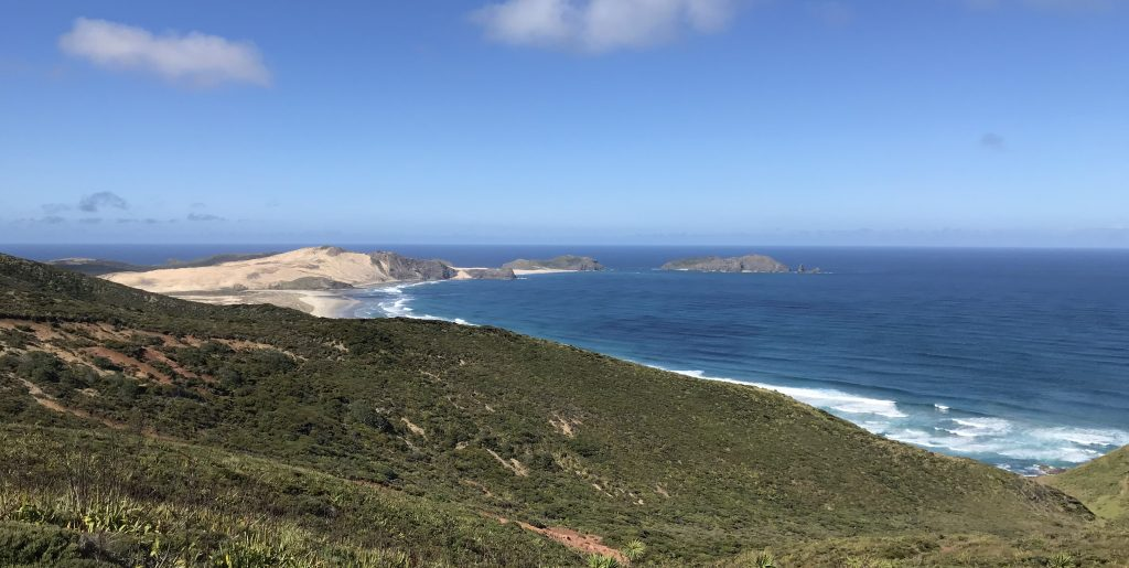 View of Aotearoa New Zealand's most northernmost beach at Cape Reinga.