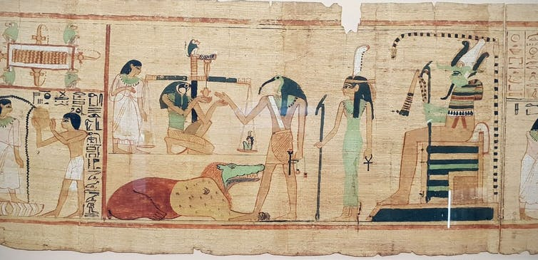 Image: Holy bin chickens: ancient Egyptians tamed wild ibis for sacrifice