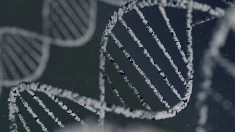 Image: Laws governing police use of DNA are changing: are the proposals fair for all New Zealanders?
