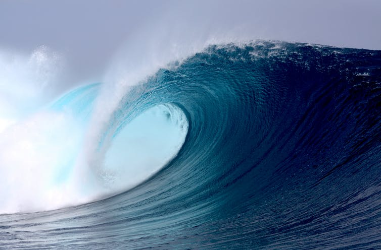 Featured image: Power from the ocean: can we use bio-fouling organisms to help extract energy from waves?