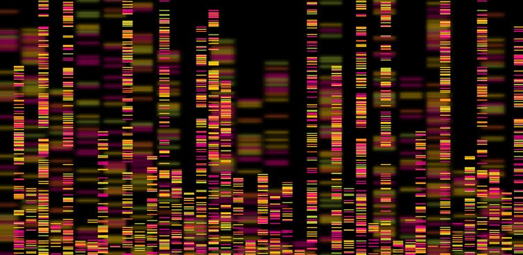 Featured image: Why rapid genome sequencing is key to finding out how long Delta has been in NZ, and how large this outbreak mightbe