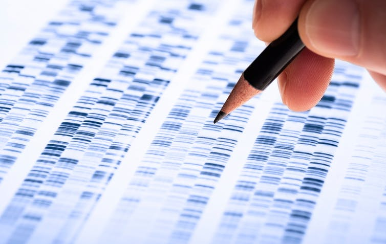 Featured image: Why New Zealanders are vulnerable to genetic discrimination in health and lifeinsurance